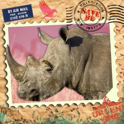 EndAn14 rhino
